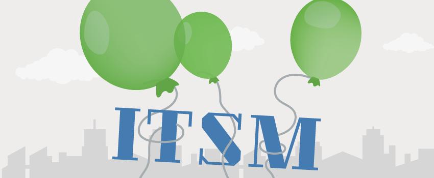 FitSM Light Framework